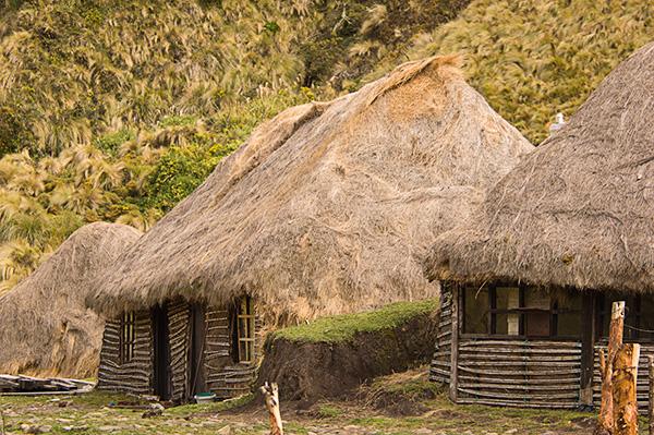 CAMINO INCA - INCA TRAIL - SENDERISMO ACHUPALLAS-INGAPIRCA